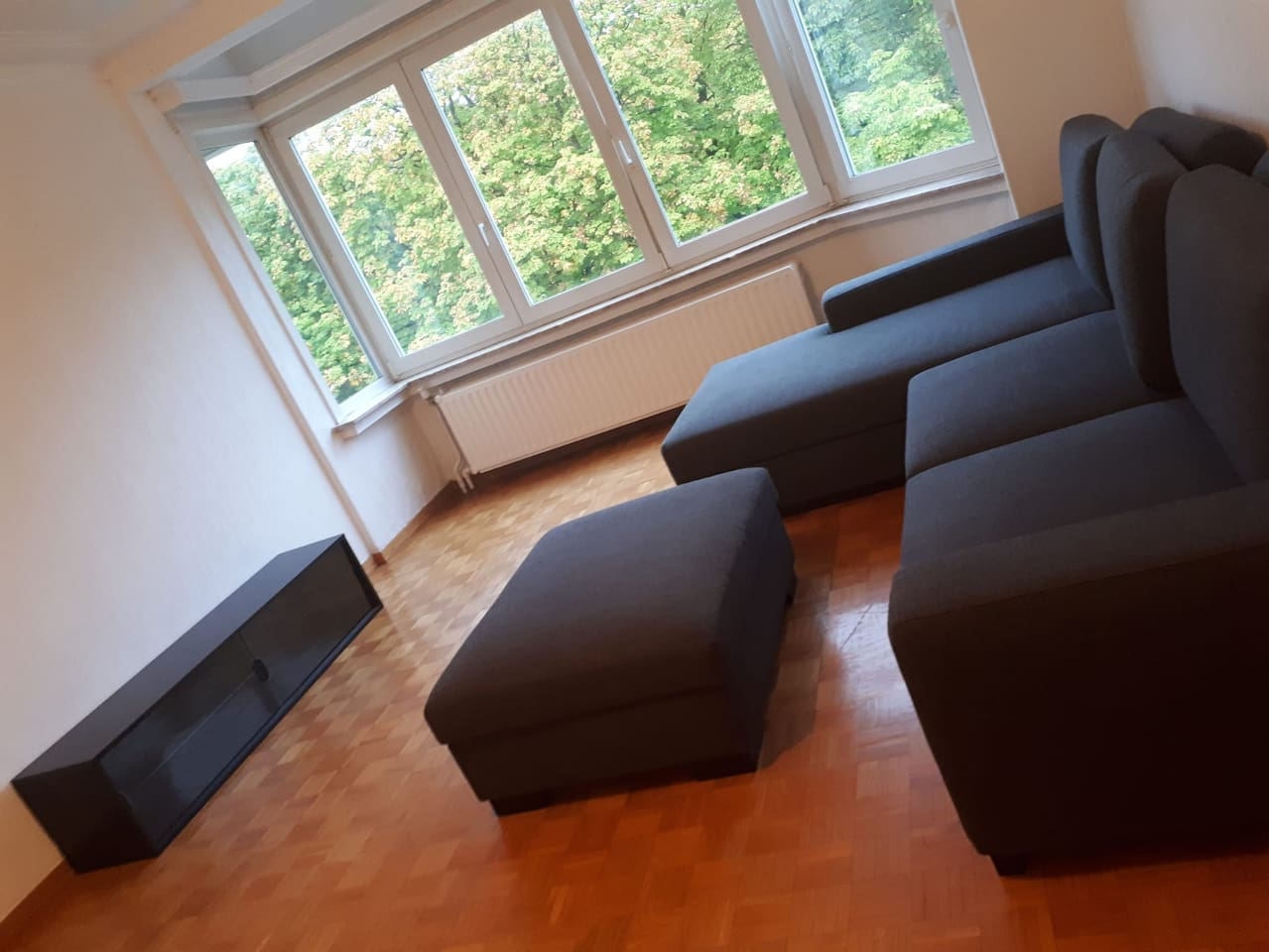 Spacious living room with view on parc