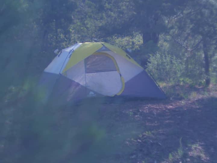 A1Plus Tent Rental