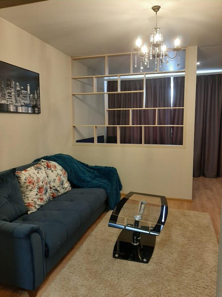 1 комнатная квартира в центре города ( пл. Ленина)