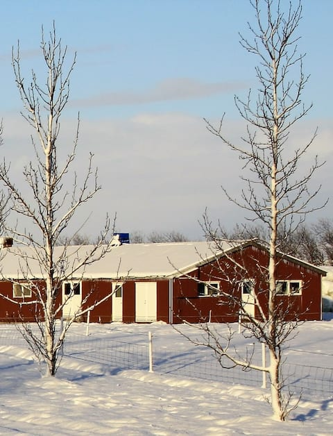 The guesthouse in the wintertime.