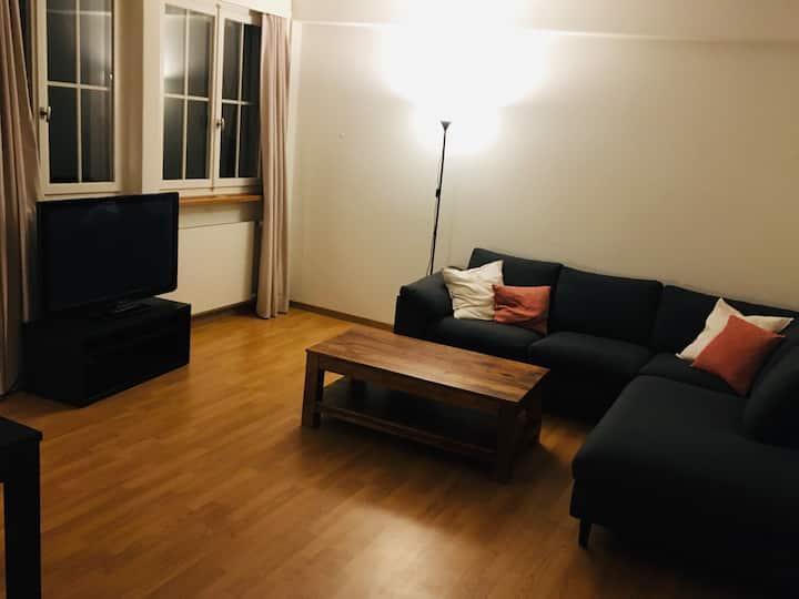 Gemütliche Wohnung 10 min von Zürich.