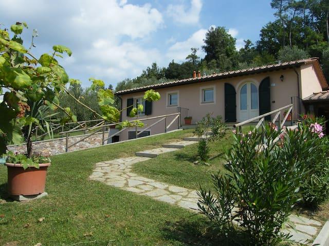 Casa il Montagnolo verde
