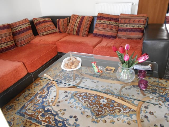 sunny flat in athens - Tavros - Daire