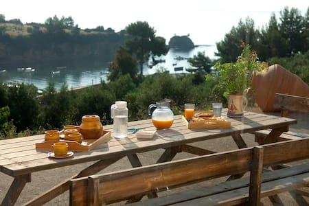 Gorgeous beachfront family villa in Evia,Greece ! - Kotsikia - Σπίτι