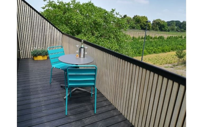 B&B De Stuifduinen - double/twin room with shower and terrace