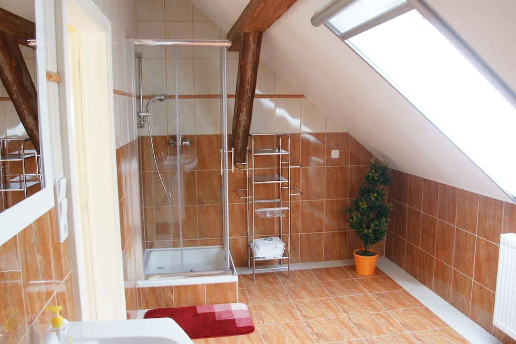 Large bathroom with toilet and shower