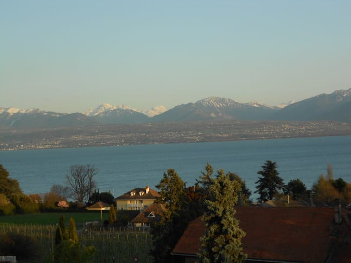 House 200m from Lake Geneva
