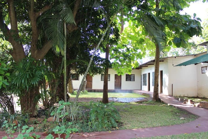 There are another 5 Lodge Rooms available also surrounded by the gardens