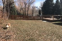 Huge back yard, deck and view of the ski mountain