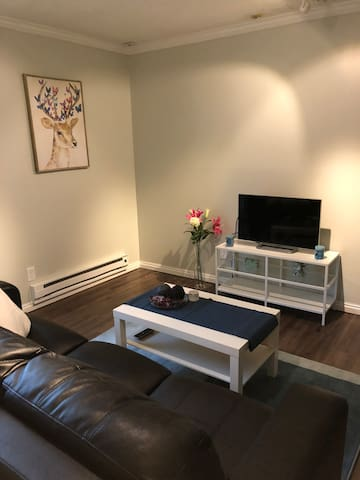Salt Lake City downtown apartment( new furnish)