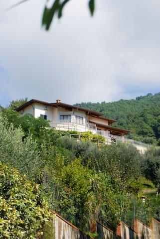Villa La Selvaccia Strettoia - Strettoia - Villa