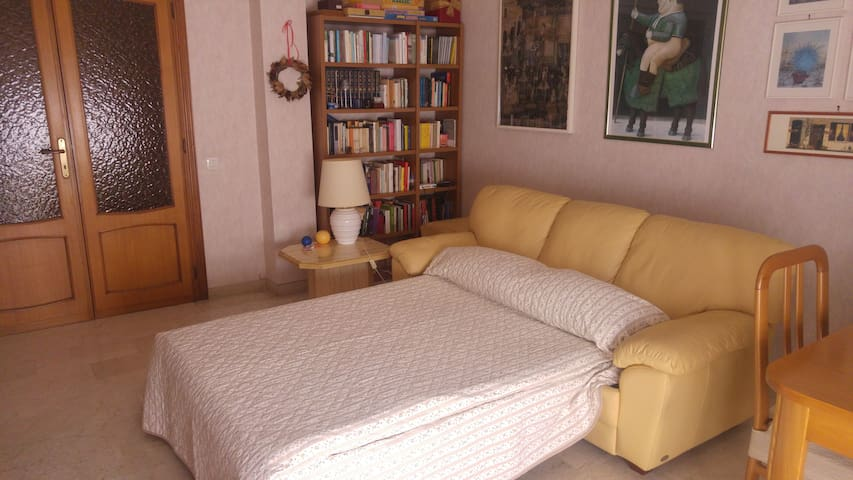 Lovely room in seaside town,40 minutes from Rome - Civitavecchia - Appartement
