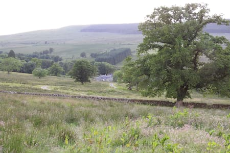 Cosy room, rural escape for Newcastleton, Kielder - Larriston