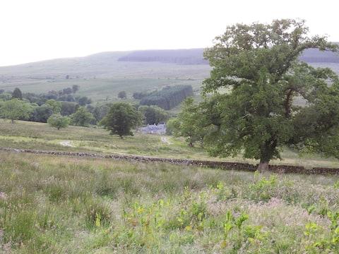 Cosy room, rural escape for Kielder, Newcastleton