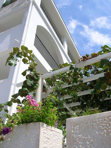 Villa Mila sea view apartment no.3 - Petrovac - Pis