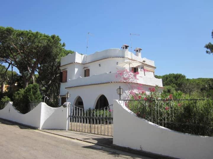 Villa Nilde 150 mt dal mare