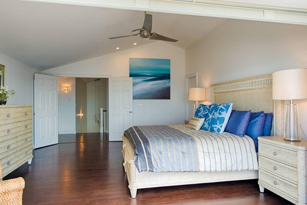 Upper floor master bedroom with bathroom en suite & walk in closet & deck 25' x 14'
