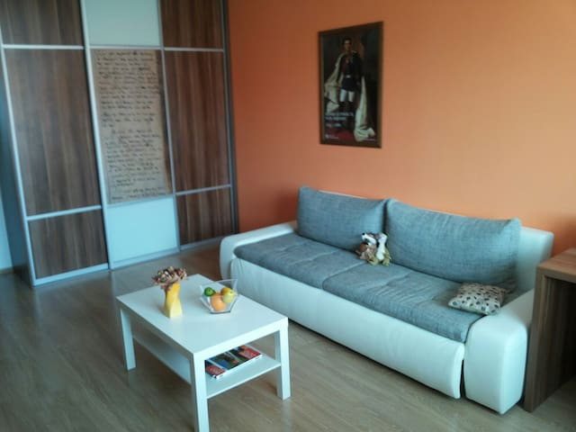 A comfort coach for 2 persons. - Skalica - Appartement