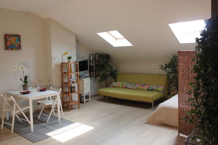 Spacious cosy loft 65 m² - Antwerpen - Loft