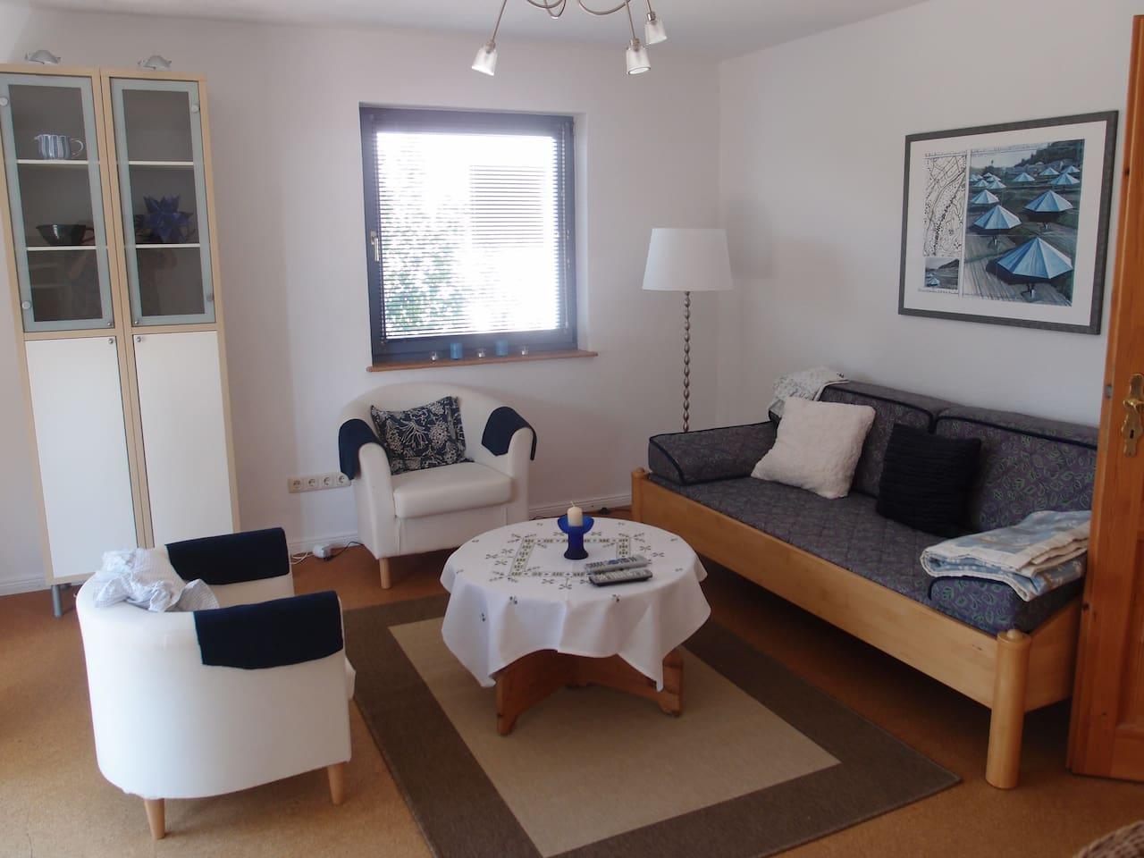 Wohnzimmer mit Schlafcouch und TV