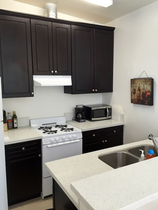 Newly renovated kitchen with dark wood cabinets
