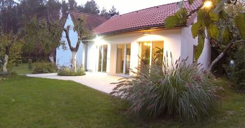 Allein im Wald - Ostsee-Ferienhaus Dany Raj