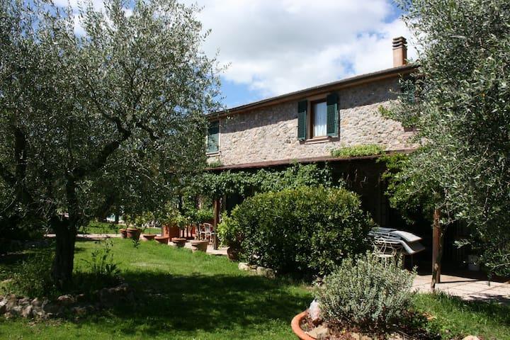 IL CICLAMINO - Campagnatico - Apartment