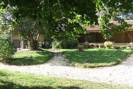 Ch. d'hôtes conviviale près de Marciac (7 km)bleue - Marciac