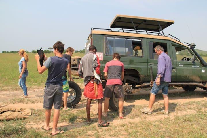 Enchoro Wildlife Camp, Masai Mara , kenya - Narok - Tent