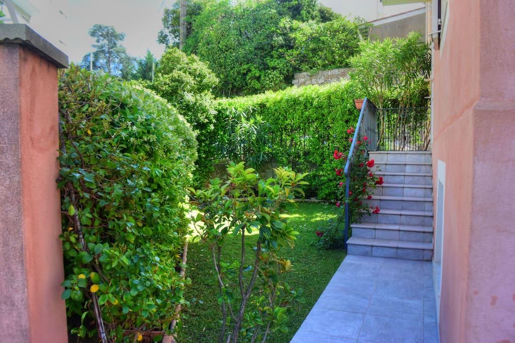 Petit jardin