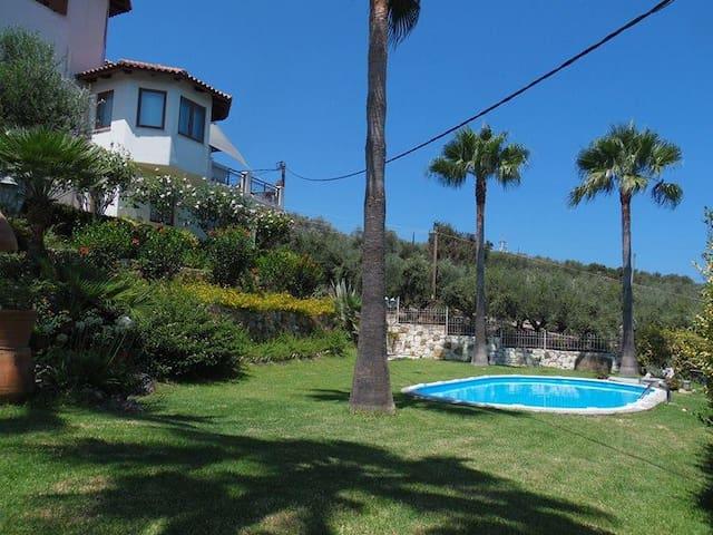 Palm Tree studio - with pool and panoramic views - Agia Marina - Daire