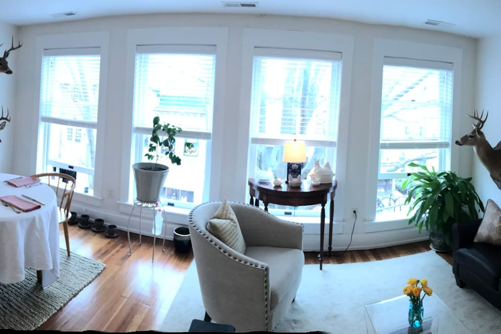 Panoramic shot of living space.