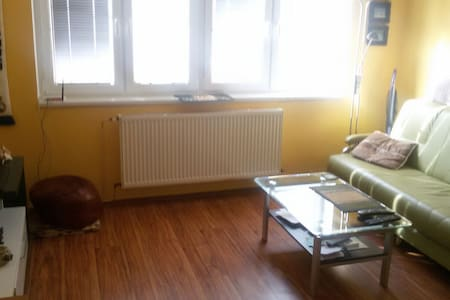 2 rooms flat in 5th floor - Liberec