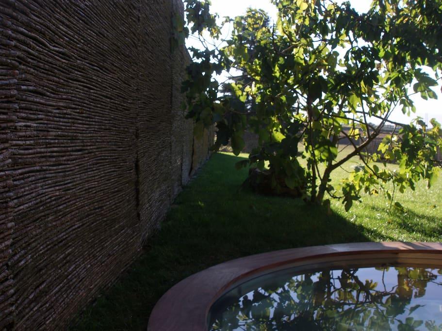 jardín y pequeña piscina
