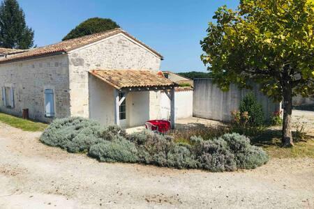 Maison au cœur du vignoble Charentais