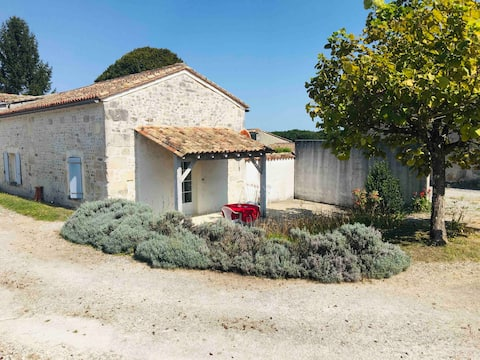 House in the heart of Charentais vineyard