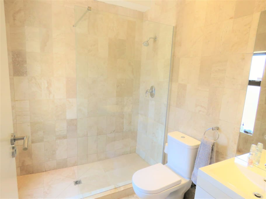 Large shower from the Executive Studio