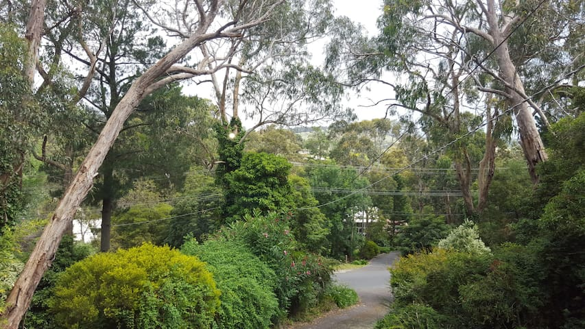 Bed and Breakfast with Scenic Views - Upwey - Hus