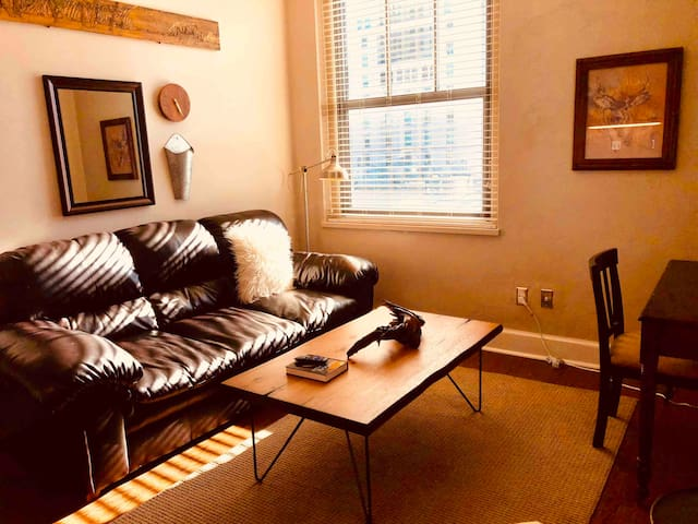 CompactLux 2Bed/CLOSE TO EVERYTHING COOL IN KC!
