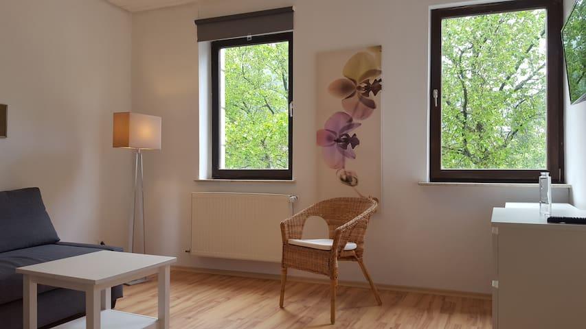 Deluxe Apartment +terrace - Heidelberg city centre