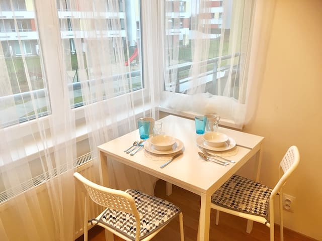 Apartment near the airpot, 20 min to city center - Praga - Pis