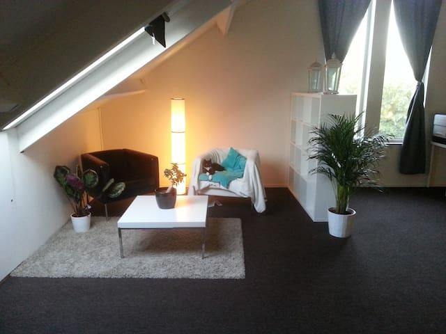 Room - Groningen - Byt