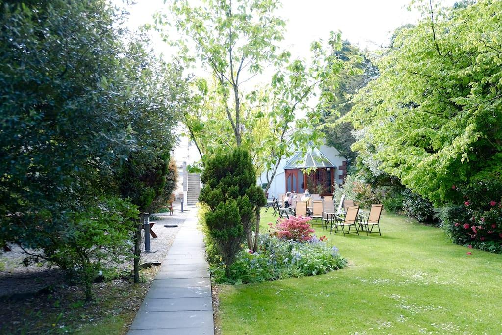 Our secret sun trap garden