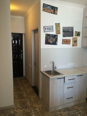 Входная дверь, дверь в с/у, кухонный уголок