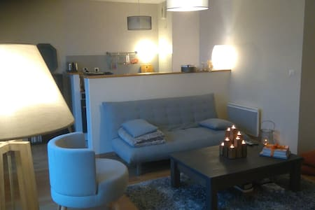 Appartement au 4ème étage d'une résidence récente - Angers - 公寓