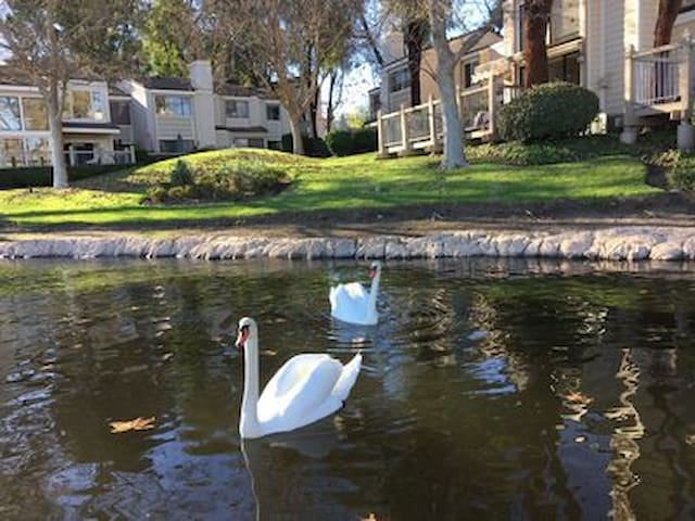 Bella Exclusive Waterfront ~ Beautiful Westlake Village! Near Malibu, 3 Month Min.