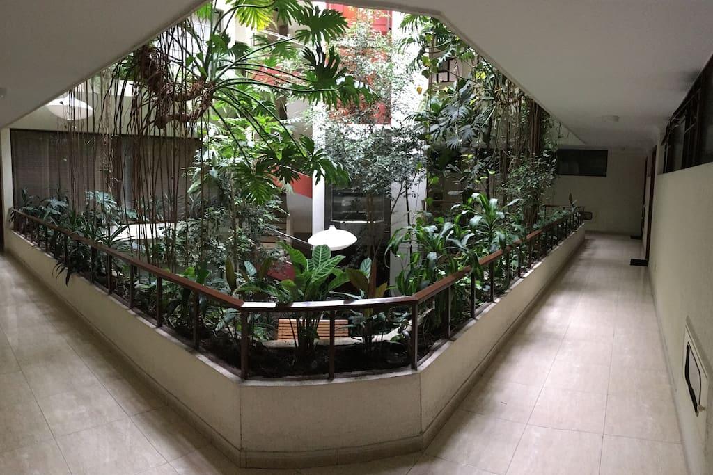 En un Edicio tradicional muy bien conservado lleno de iluminación y una jardinería muy especial en el interior que deja respirar un aire muy puro en todos los apartamentos