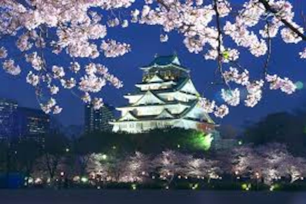Since go Osaka Castle also to walk, it is just good for a walk! !由于去大阪城也走,这是散步刚刚好! !오사카도 걸어 갈 수 있으므로 산책 그냥 좋다! !