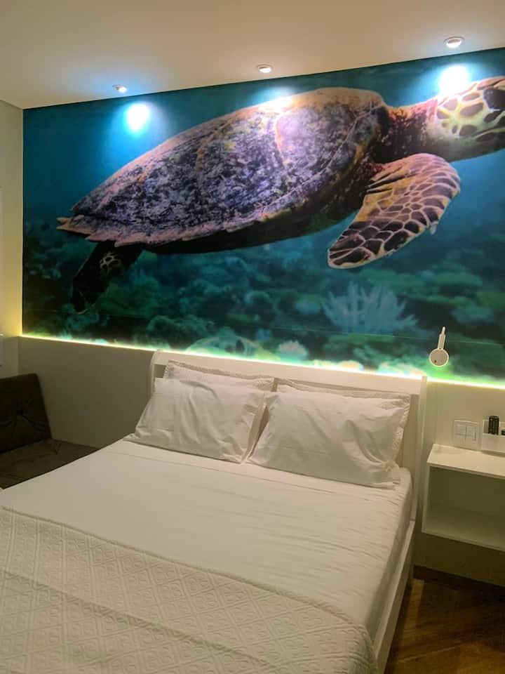 Suite Turtle
