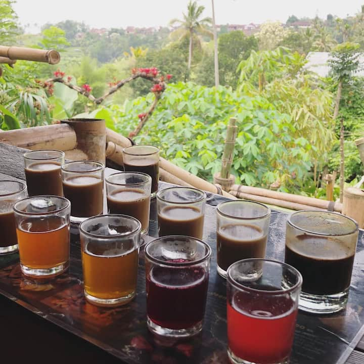 Bali Coffee agriculture